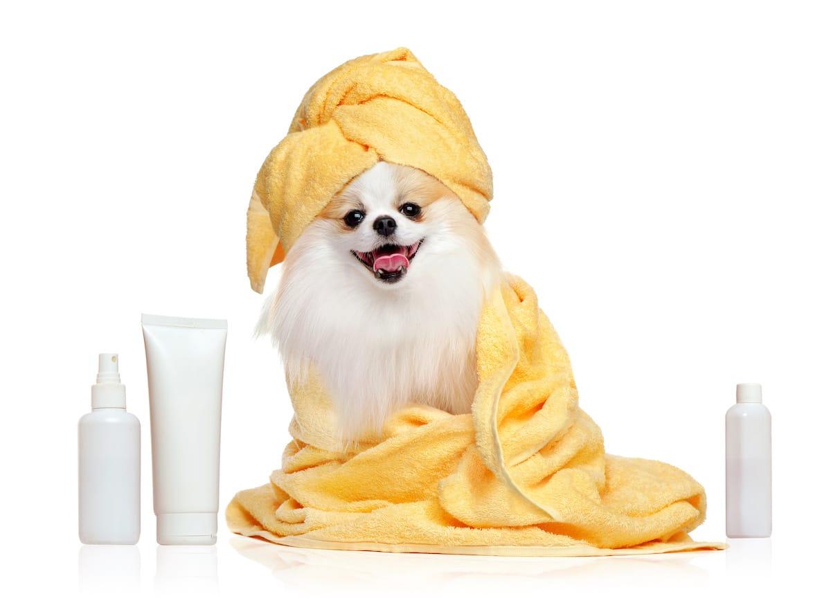 psie kosmetyki do kąpieli